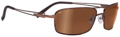 buy polarised sunglasses online  polarised gold