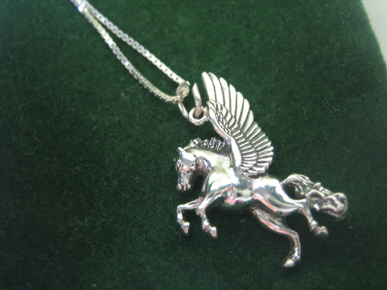 The gallery for --> Pegasus Sightings