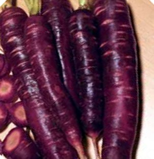 350-Dragon-Carrot-seeds-Purple-Carrots