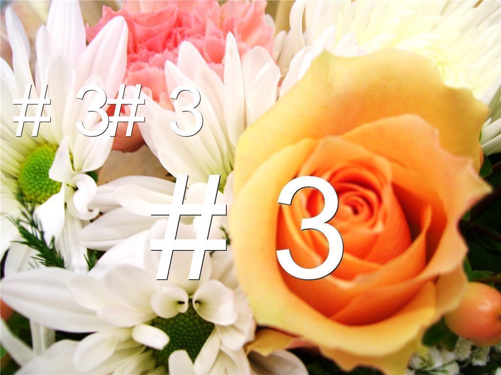 Royalty free image.Fresh pink white yellow flowers.Rose.Bucket.Original photo image
