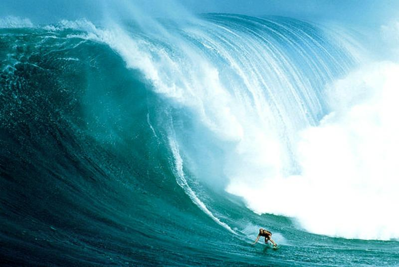 MAXI POSTER (91.5cm x 61cm) WAVE RIDER