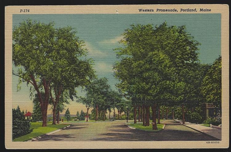 WESTERN PROMENADE, PORTLAND, MAINE, Postcard