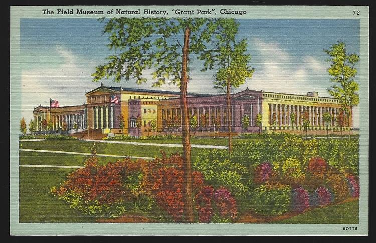 FIELD MUSEUM OF NATURAL HISTORY, GRANT PARK, CHICAGO, ILLINOIS, Postcard