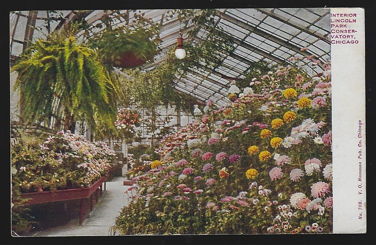 INTERIOR LINCOLN PARK CONSERVATORY, CHICAGO, ILLINOIS, Postcard