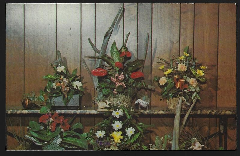 Image for OBERER'S FLOWERS, DAYTON, OHIO