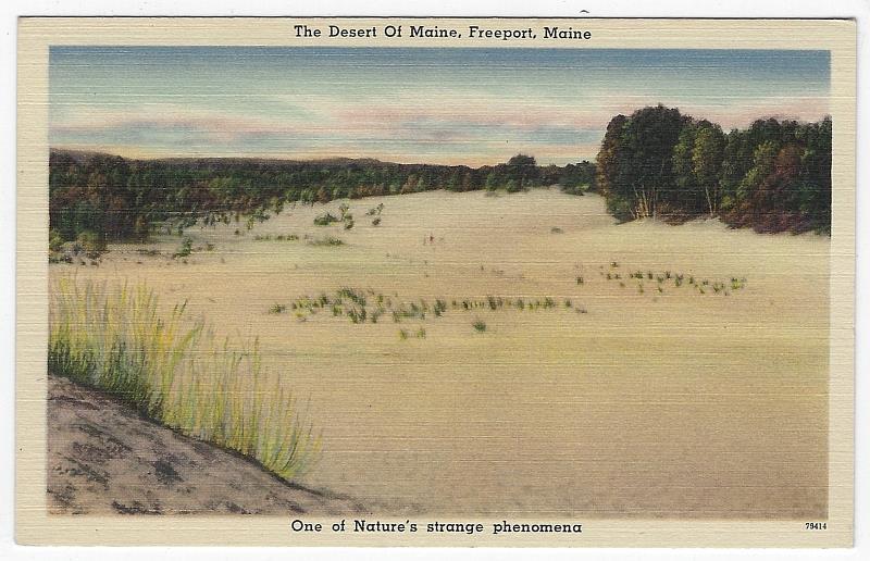 Image for DESERT OF MAINE, FREEPORT, MAINE