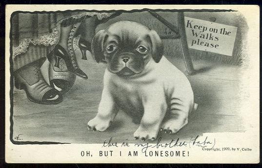 V. COLBY POSTCARD OF A LONESOME DOG, Postcard