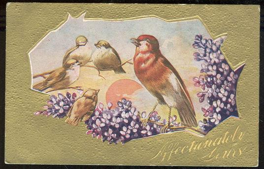 ROBINS ON BRANCH WISHING AFFECTIONATELY YOURS, Postcard