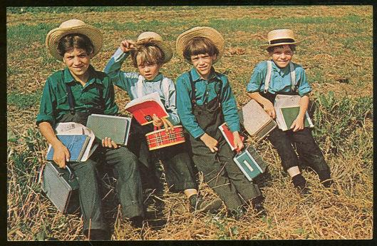 GROUP OF AMISH SCHOOL BOYS RESTING, Postcard