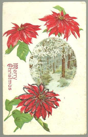 MERRY CHRISTMAS POSTCARD WITH POINSETTIAS AND TREES, Postcard