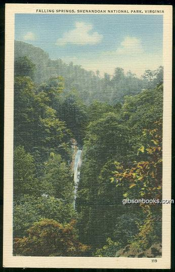 FALLING SPRINGS SHENANDOAH NATIONAL PARK, VIRGINIA, Postcard