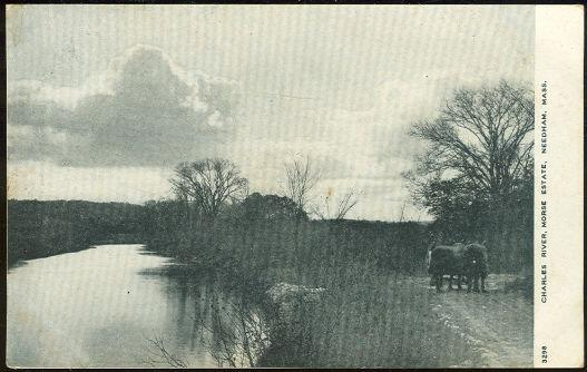 CHARLES RIVER, MORSE ESTATE, NEEDHAM, MASSACHUSETTS, Postcard