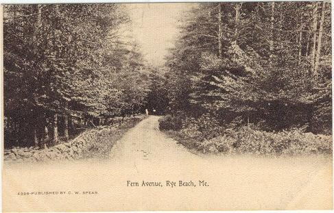FERN AVENUE, RYE BEACH, MAINE, Postcard
