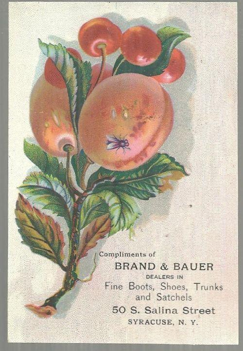 ADVERTISEMENT - Victorian Trade Card for Brand and Bauer Fine Boots, Syracuse, New York