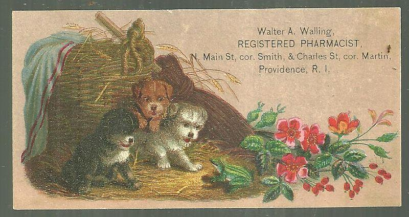 VICTORIAN TRADE CARD FOR WALTER A. WALLING, REGISTERED PHARMACIST, PROVIDENCE, RHODE ISLAND WITH PUPPIES, Advertisement