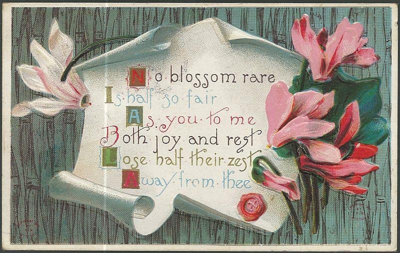 POSTCARD WITH PINK FLOWERS, NO BLOSSOM RARE, Postcard