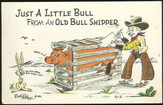 Image for COMIC BOB PETLEY POSTCARD OF LITTLE BULL FROM BULL SHIPPER
