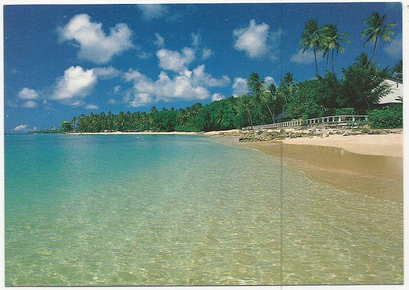 LARGE POSTCARD OF COBBLERS COVE, BARBADOS, Postcard
