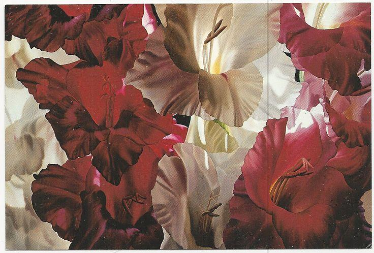 Image for WINIFRED GODFREY POSTCARD OF MULTICOLOR GLADIOLI, OIL ON CANVAS