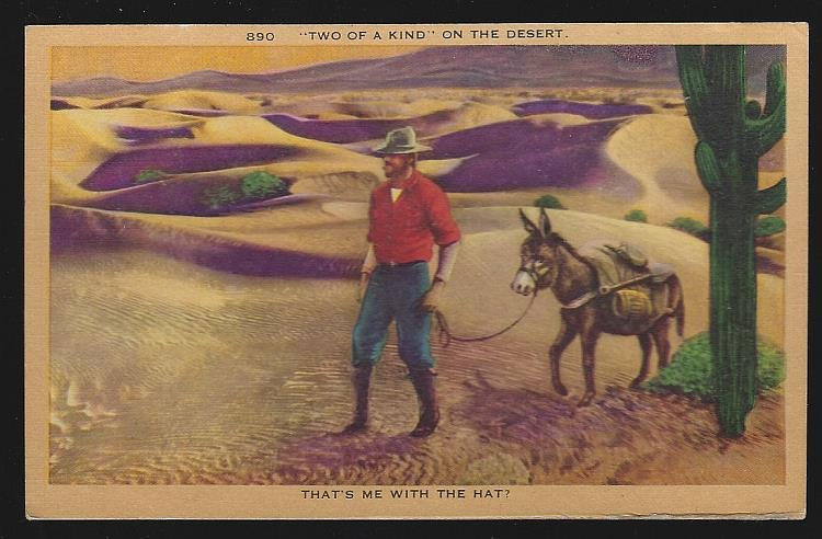 WESTERN COMIC POSTCARD OF TWO OF A KIND, A MAN AND HIS DONKEY, Postcard