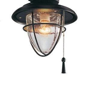 Hampton Bay Palm Beach 1 Light Gilded Iron Ceiling Fan