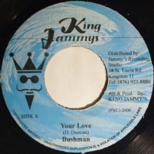 bushman your love 45 reggae thank you father riddim on PopScreen