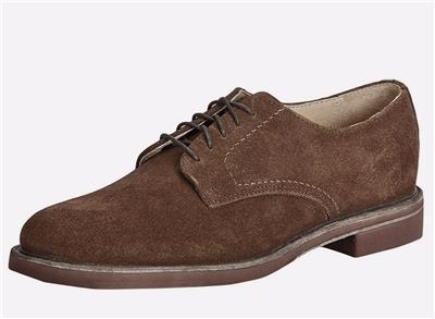 15d0bec09 New in Box - $248 FRYE Jim Brown Suede Derby Oxfords Size 10 ...