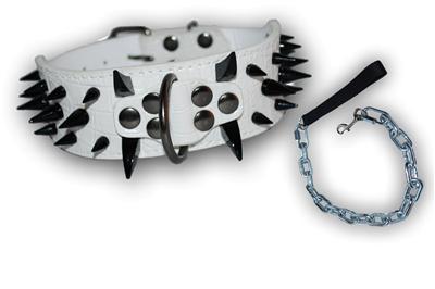 Pitbull Leather Dog Collar Amp Chain Leash Spikes Boxer