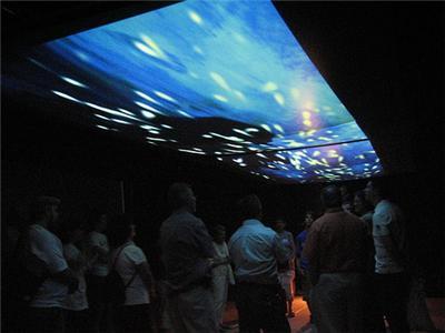 Rear Projection Screens