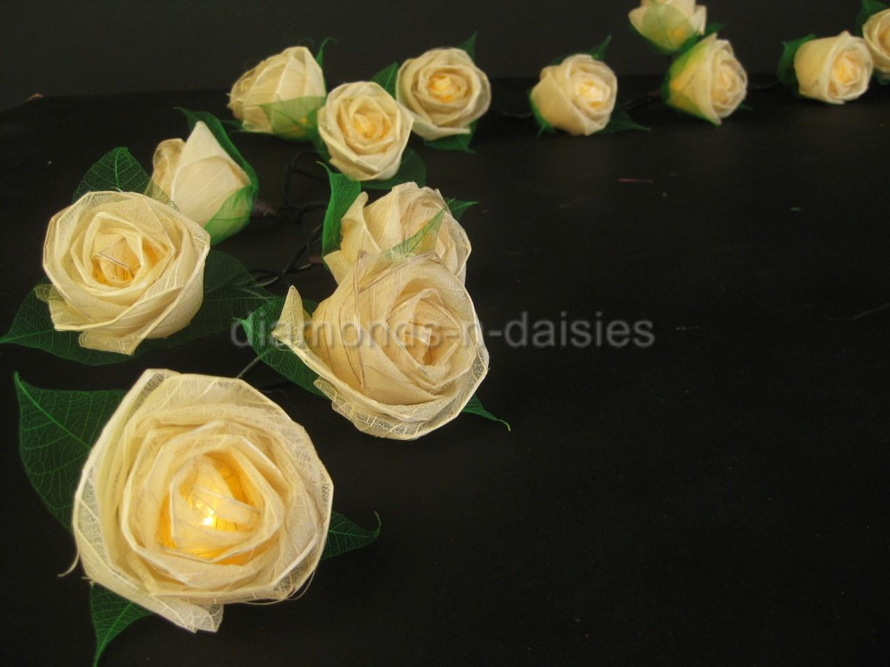 20 Cream Battery Operated Large Rose Flower Led String