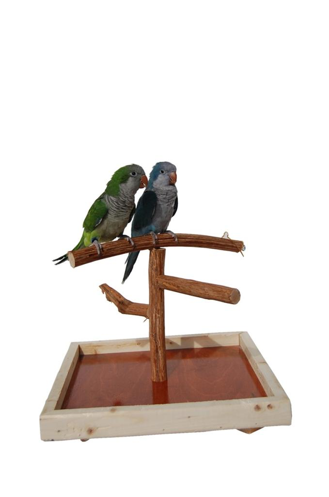 Dragonwood Bird Training Tabletop T Stand Deluxe Small