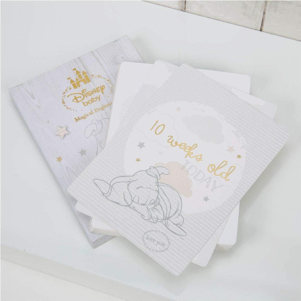 Baby 30 Milestone Cards With Foil Baby Shower Gift CG1535