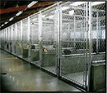 Dog and Cat Kennel Sample Business Plan