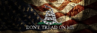 Gadsden Usa Old Flag Don T Tread On Me Rear Window Graphic