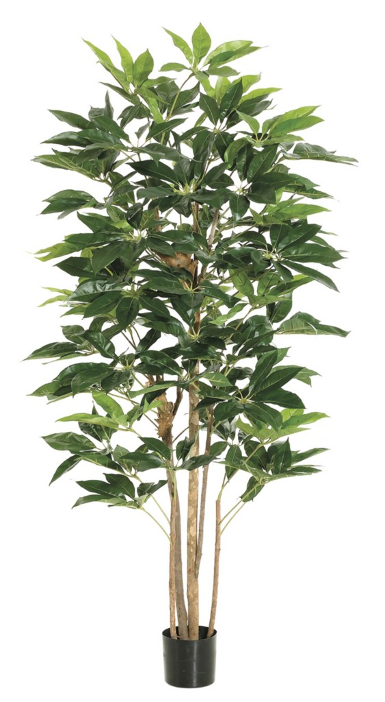 silk trees-ferns-orchids, artificial bonsai-topiary, home &#38