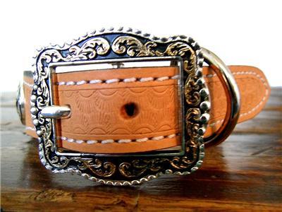 Western Star Genuine Leather Dog Collar W Concho Cowboy