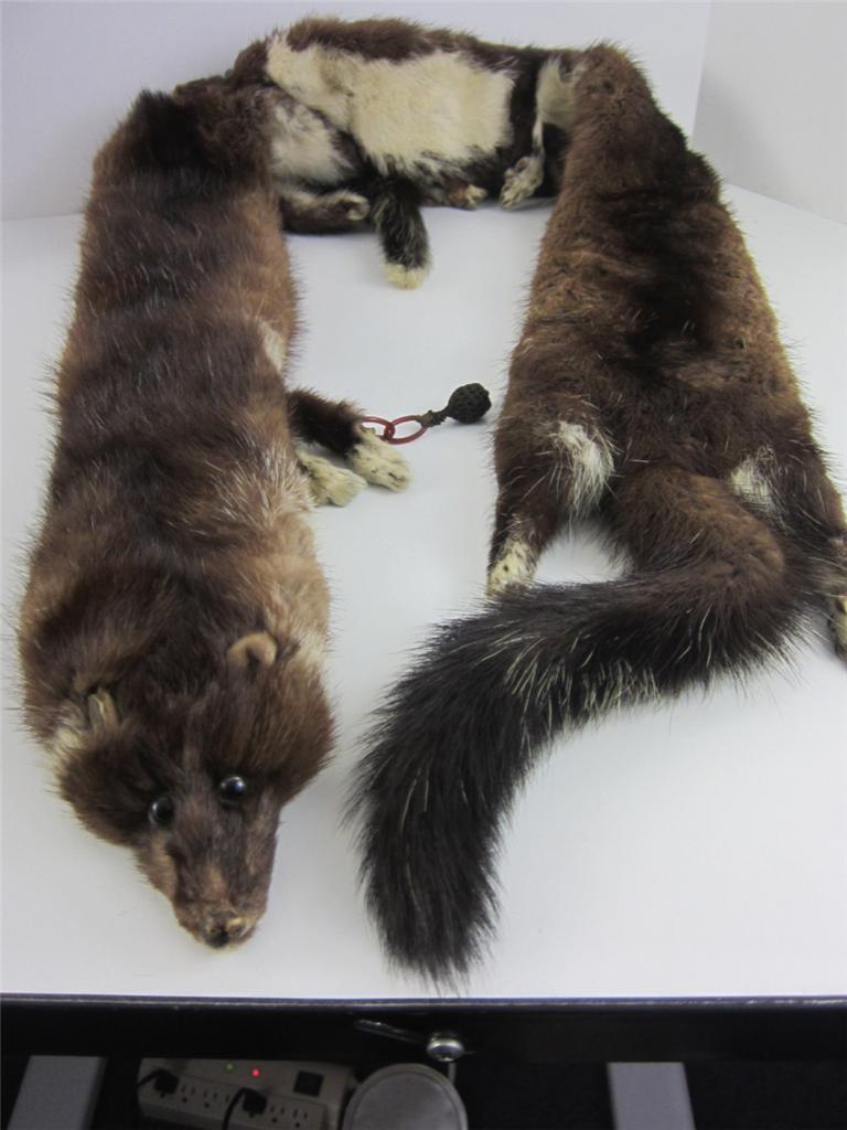 "White Fur Stole >> Vintage Mink Scarf Stole Collar 2 Pelt 51"" Luxurious Brown ..."