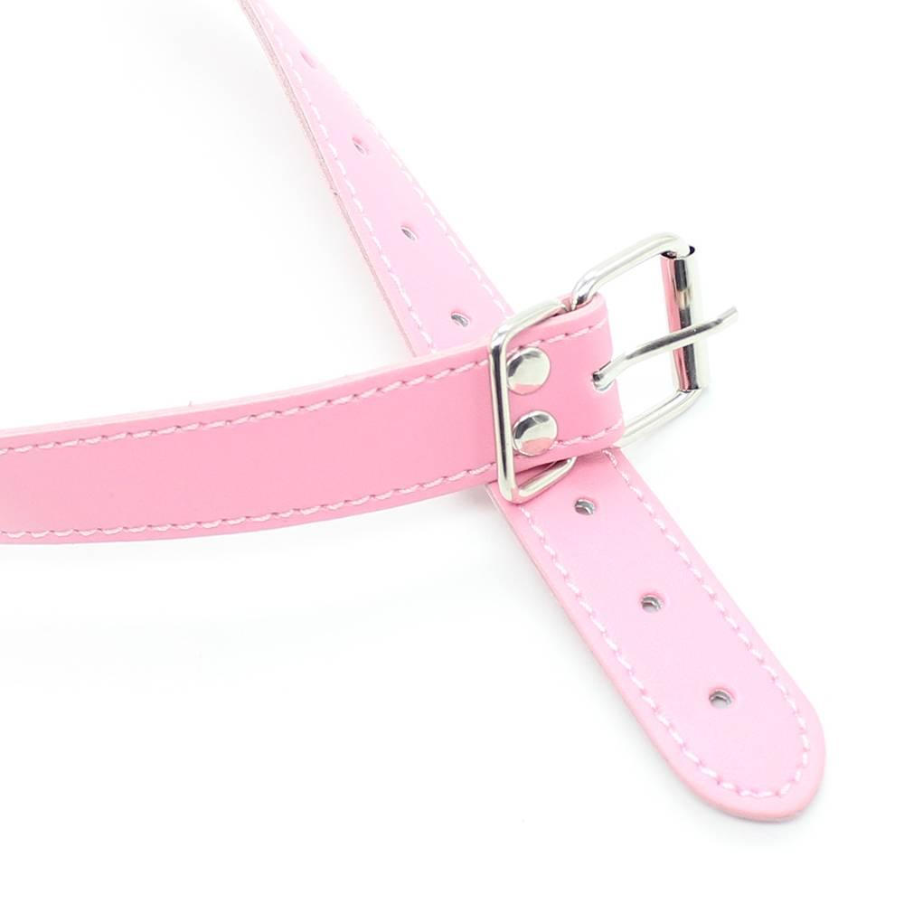 Pink Harness Gag 44