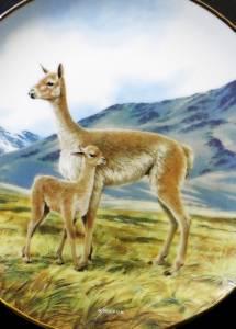 The Vicuna Wandteller Sammelteller Endangered Species