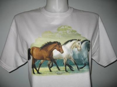 Western Tshirt Three White Horses M L or XL S