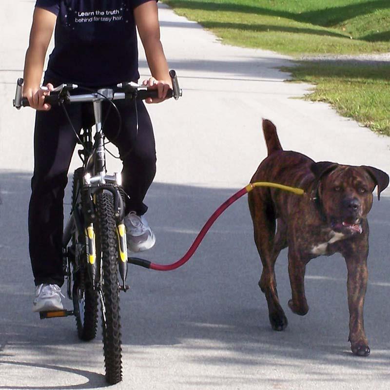 Bike Tow Leash Dog Bicycle Attachment Leash   eBay