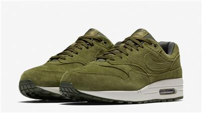 Details about NIKE AIR MAX 1 PREMIUM SUEDE 875844 301 OIL CANVASSEQUOIA GREENLIGHT BONE