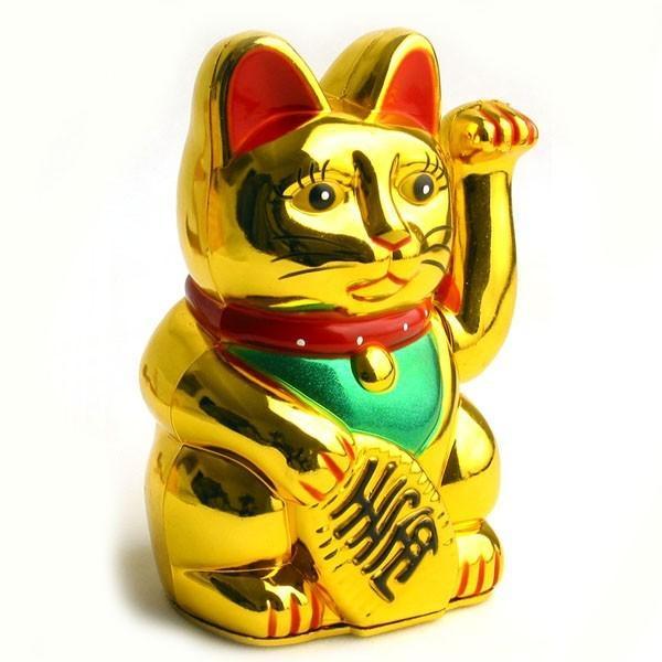 Speaking, asian prosperity cat you talent