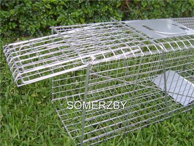 Trap Humane Possum Cat Rabbit Bird Animal Cage Live Catch