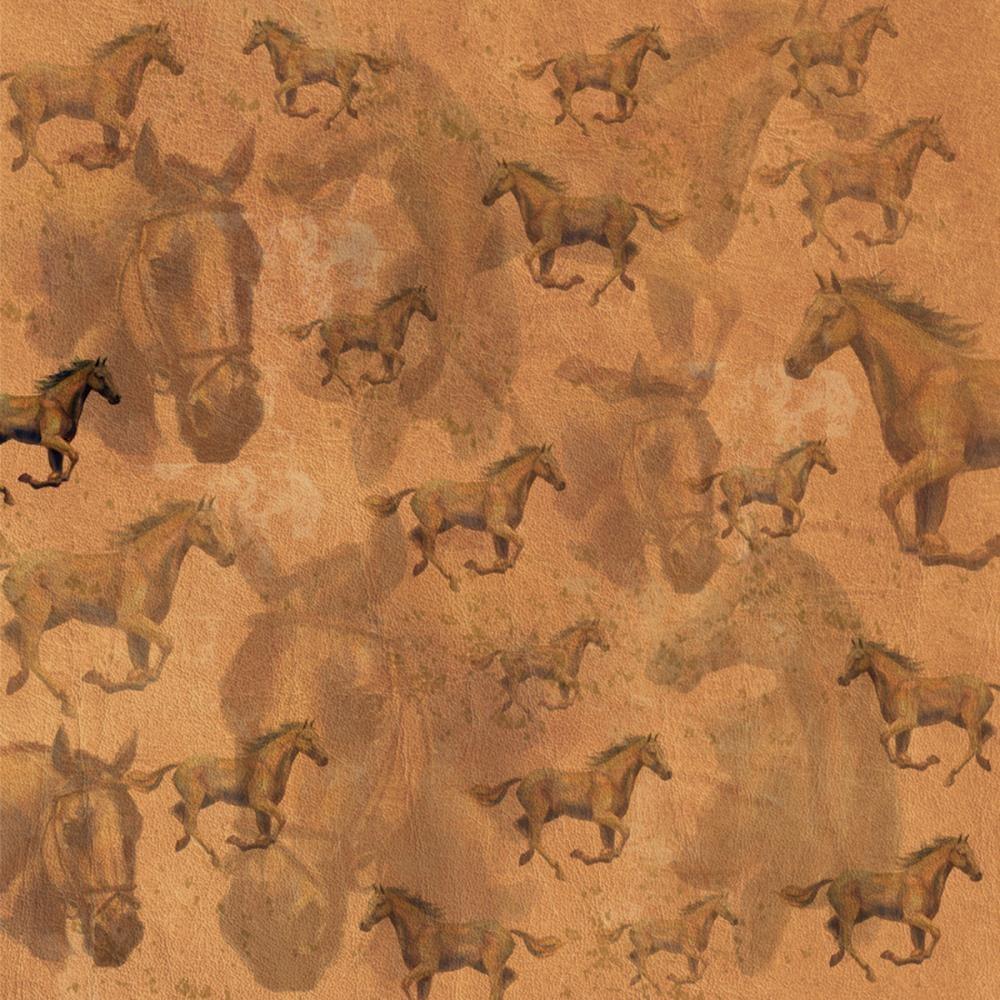 Descriptive Essays - The Horse Farm
