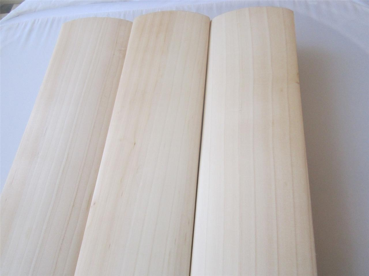 Pro Quality Type A English Willow Cricket Bat Nurtured In The Uk Ebay
