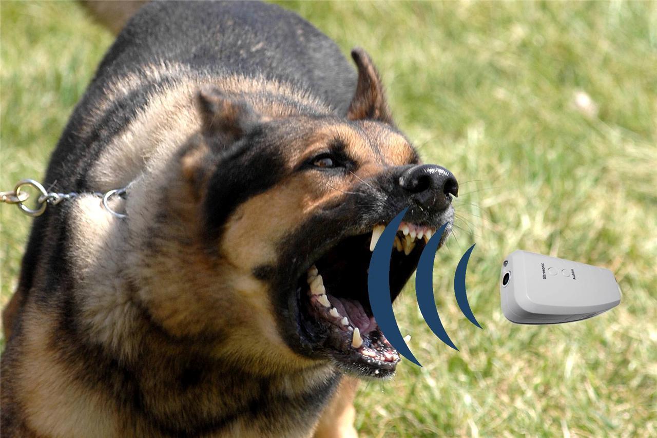 Numaxes Dog Repel Ultrasonic Dog Bark Control Dog