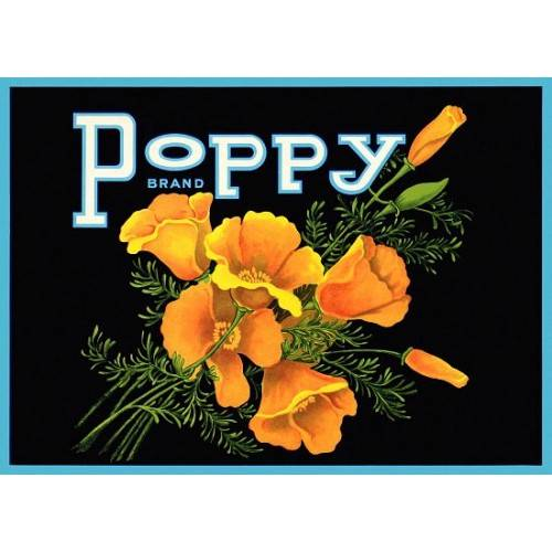 New Vintage Poppy Brand Flowers Label Poster Decor Wall