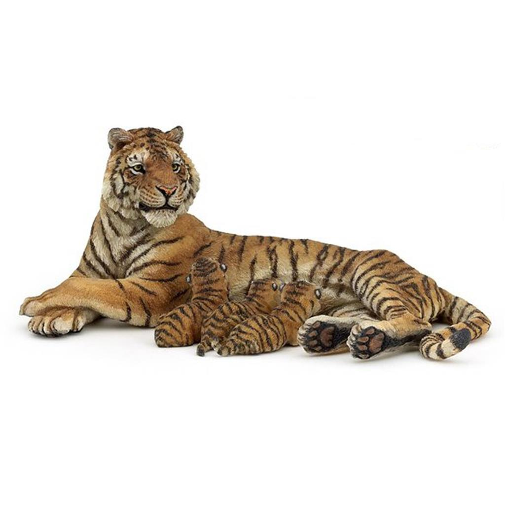 193 Words Short Essay on the Tiger for kids
