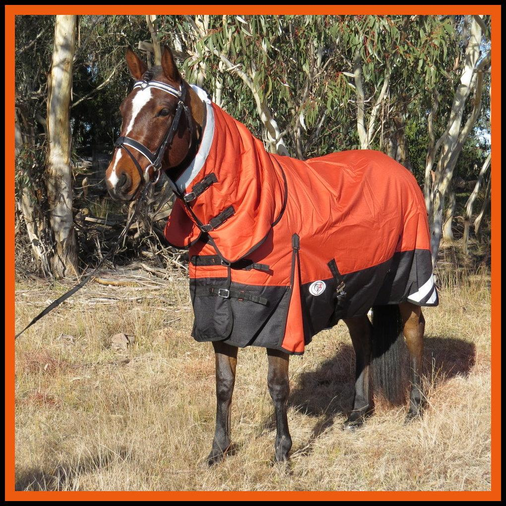 Winter Combo Horse Rug Orange